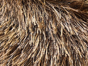 Fiber Content 100% Polyester, Brand ICE, Camel, Brown, Yarn Thickness 5 Bulky  Chunky, Craft, Rug, fnt2-22749
