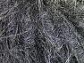 Fiber Content 100% Polyamide, Brand ICE, Grey, fnt2-62835